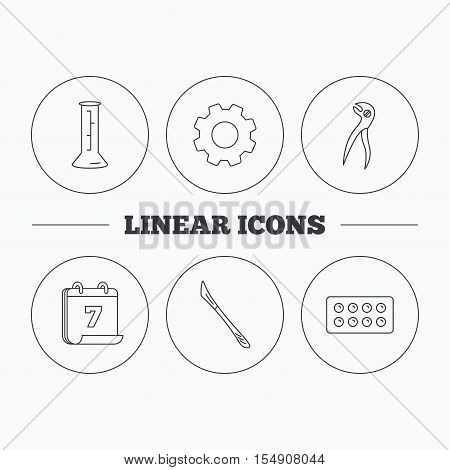 Lab beaker, tablets and dental pliers icons. Scalpel linear sign. Flat cogwheel and calendar symbols. Linear icons in circle buttons. Vector
