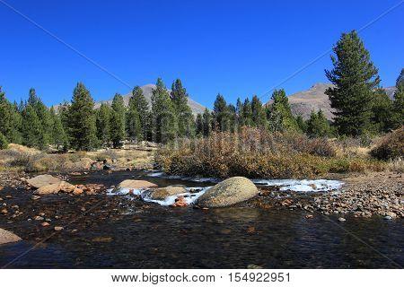 Autumn on Dana Fork,  Yosemite National Park