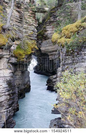 Athabasca Falls Near Jasper In Canada