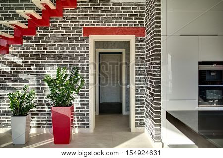 Hall in a modern style with a black brick wall with the entrance to another room. On the left there is a red-cream stair with glass partition, plants in the pots. On the right there is kitchen zone.