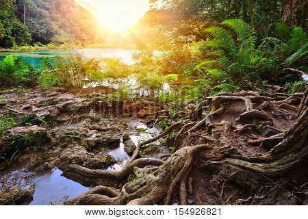 Beatiful Cascades National Park in Guatemala Semuc Champey at sunset.