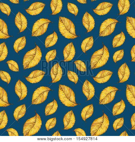 Seamless pattern of watercolor autumn yellow leaves, hand painted watercolour autumn background of falling leaf elm, design for fabric, textile, wrapping paper, card, invitation, wallpaper, web design