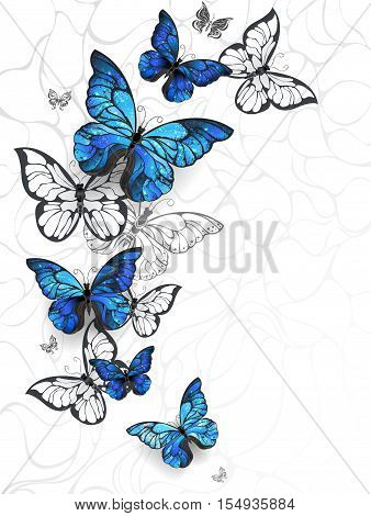 Flying Blue Butterflies morpho and white butterflies on a light abstract background. Morpho. Design with blue butterflies morpho.