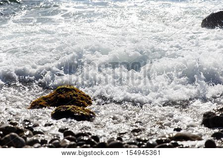 Coastal stones covered with moss among oncoming waves