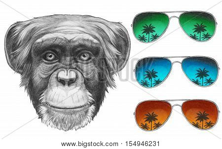 Original drawing of Monkey with mirror sunglasses. Isolated on white background.