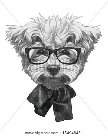 Hand drawn portrait of Maltese Poodle with glasses and bow.