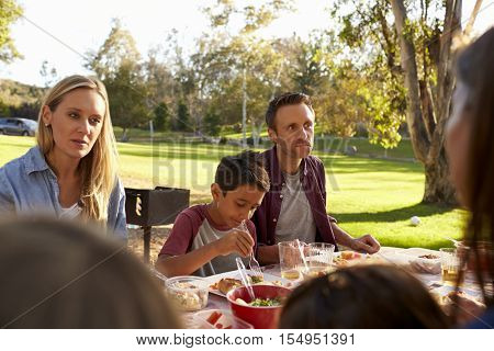 Two families having a picnic in a park, over shoulder view