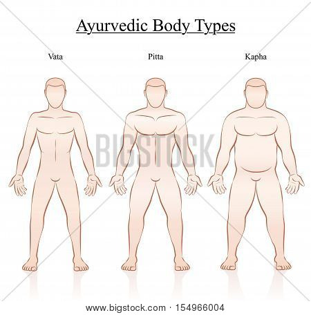 Ayurvedic body constitution types - vata, pitta, kapha. Outline illustration of three men with different anatomy.