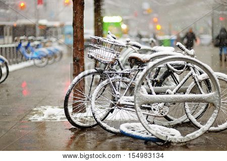 Snow Covered Bicycles In New York