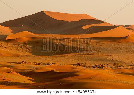 Desert sunrise in the Namibian Desert with shadows
