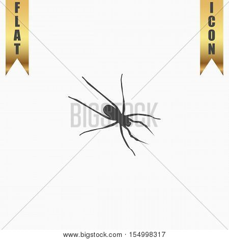 Spider. Flat Icon. Vector illustration grey symbol on white background with gold ribbon