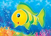illustration for children. a series reef. animals of a coral reef. fish. poster
