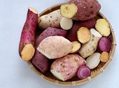 Diversity sweet potato on white background healthy food that rich fiber vitamin starch and mineral this cereal absorb toxin fat so good for digestive system poster