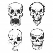 Skull vector tattoo art in sketch style. Set of terrifying skull head with jaw and smirk. May be used for skull mascot or pirate skull head isolated, horror logo or dead human icon poster