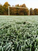 Focus on the foreground of early morning frost on the grass of a football or soccer pitch, with the goalposts and late autumn trees in the background poster