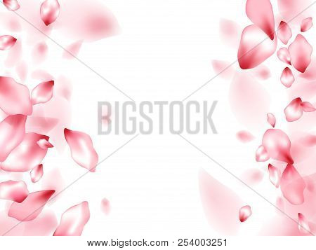 Pink sakura flower vector photo free trial bigstock pink sakura flower flying petals isolated on white romantic beauty salon background japanese sakur mightylinksfo