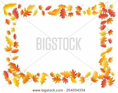 Oak And Maple Leaf Beautiful Background Seasonal Vector Illustration. Autumn Leaves Falling Graphic