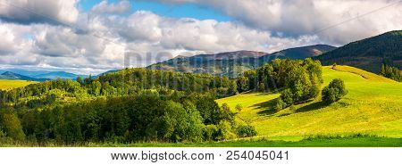Gorgeous Panorama Of Mountainous Landscape. Woods And Grassy Alpine Meadow In Evening Light. Distant