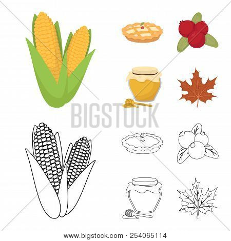 Cranberry, Pumpkin Pie, Honey Pot, Maple Leaf.canada Thanksgiving Day Set Collection Icons In Cartoo