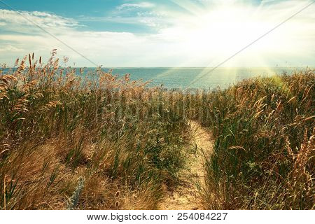 path to the sea, high coast, beautiful summer landscape, travel concept