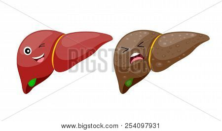 Comparison Of Healthy Liver And Cirrhosis. Liver Disease. Vector Iillustration Info-graphic, Isolate
