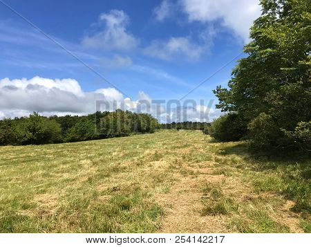 View of recently mowed meadow on top of Hooper Bald off Cherohala Skyway in North Carolina poster