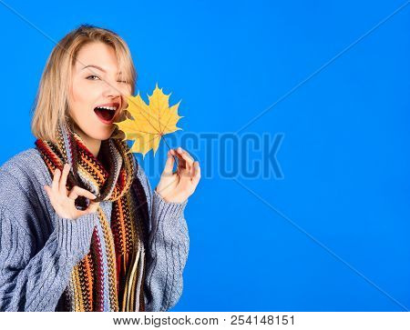 Autumn. Sexy Woman With Maple Leaf. Woman With Autumn Leaf Shows Sign Ok. Yellow Maple Leaf. Woman H