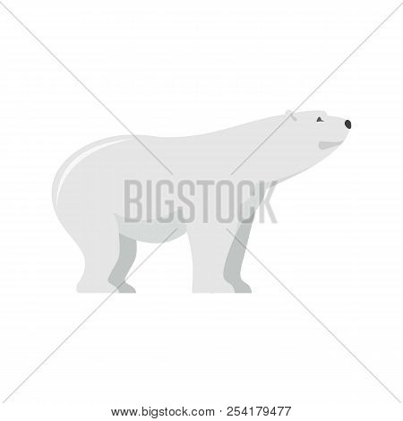 Watching Of Polar Bear Icon. Flat Illustration Of Watching Of Polar Bear Icon For Web Isolated On Wh