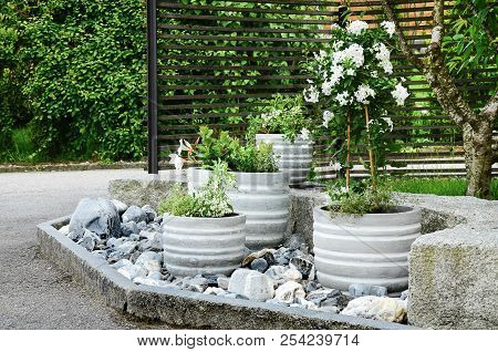 Stone Garden Arrangement At House Entrance With Green And White Plants And Concrete Plant Pots