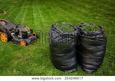 Mowing Grass. The Gardener Mows The Grass With An Electric Mower. Work In The Garden, Spring Cleanin