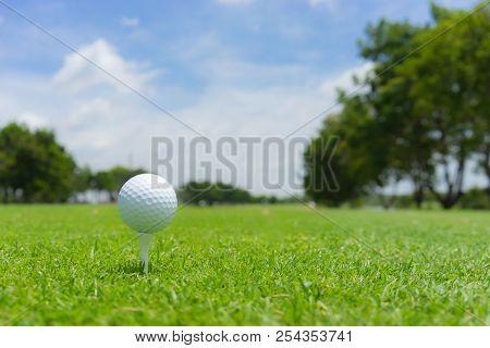 Golf concept : Golf ball on golf course, an golf ballset up for tee shot. Fairway as background. poster