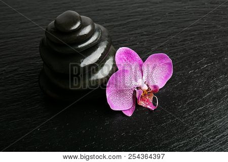 Zen Basalt Stones And Orchid Flower. Spa And Wellness Concept.