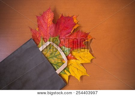 Colorful Autumn Leaves In Brown Paper Bag. Sale And Shopping Concept. Place For Text.