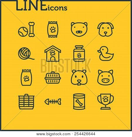 Vector Illustration Of 16 Fauna Icons Line Style. Editable Set Of Pet Food, Pet Medicine, Pet Toys A