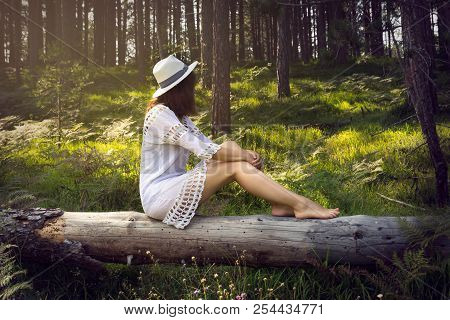 Young Beautiful Girl Sitting In The Forest On The Tree Trunk. Beautiful Girl In The Forest. Beautifu