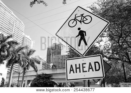 Traffic Signs On City Road In Miami, Usa. Bicycle And Pedestrian Crossing Ahead Warning. Transportat