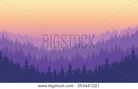 Vector Illustration Dense Coniferous Forest On A Hill Under A Morning Or Evening Sky With Purple Daw