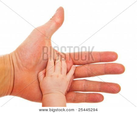 Comparision of adult and infant hand