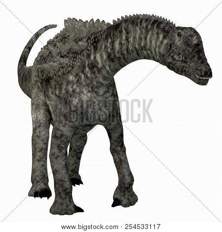 Ampelosaurus Dinosaur Front 3d Illustration - Ampelosaurus Was A Herbivorous Sauropod Dinosaur That