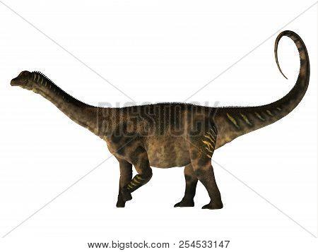 Antarctosaurus Dinosaur Side Profile 3d Illustration - Antarctosaurus Was A Herbivorous Sauropod Din