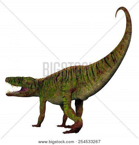 Batrachotomus Dinosaur Tail 3d Illustration - Batrachotomus Was A Carnivorous Archosaur Dinosaur Tha