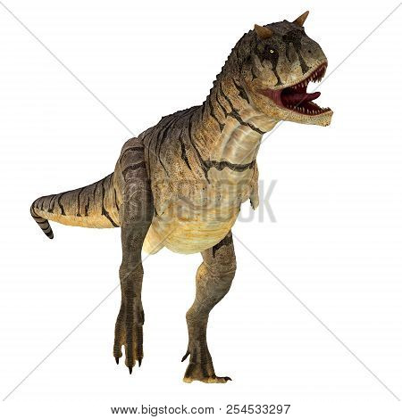Carnotaurus Sastrei Dinosaur On White 3d Illustration - Carnotaurus Was A Carnivorous Theropod Dinos