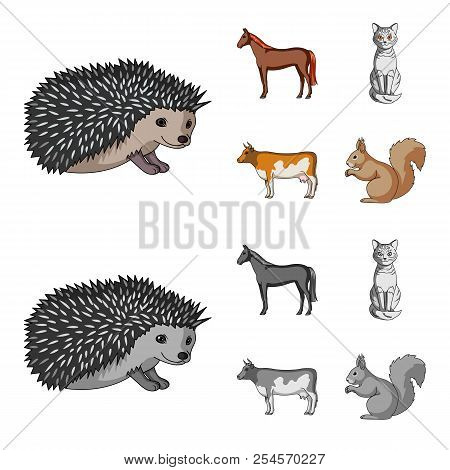 Horse, Cow, Cat, Squirrel And Other Kinds Of Animals.animals Set Collection Icons In Cartoon, Monoch