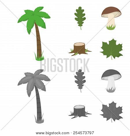 Oak Leaf, Mushroom, Stump, Maple Leaf.forest Set Collection Icons In Cartoon, Monochrome Style Vecto