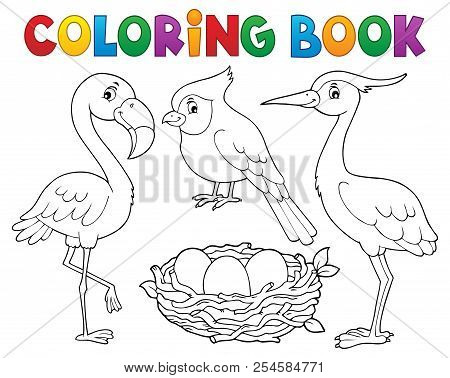 Coloring Book Bird Topic 1 - Eps10 Vector Picture Illustration.