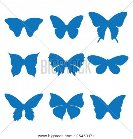 Vector illustration of the icons butterfly