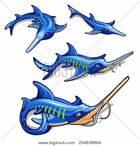 The Growth Stage Of Blue Sturgeon Isolated On White Background. Commercial Fish. Cartoon Vector Clos