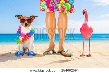 Dog And Owner Sitting Close Together At The Beach On Summer Vacation Holidays, Close To The Ocean Sh