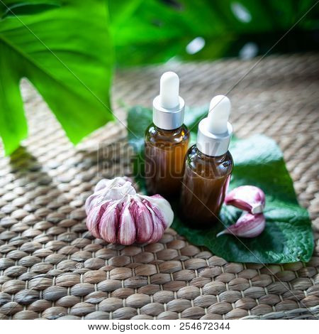 Bottles Of Garlic Oil And Sliced Garlic оn A Natural Green Background. Homeopathic And Herbal Medici