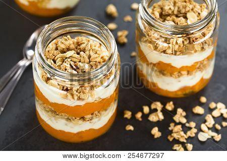 Fresh Homemade Pumpkin Puree, Yogurt And Granola Parfait Breakfast, Snack Or Dessert, Served In Glas